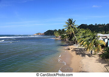 Dominica - Tropical beach on Dominica, Caribbean Sea