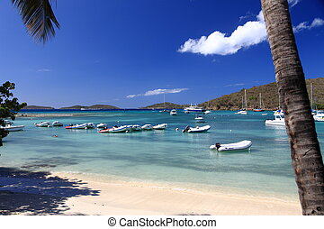 Bequia Island - Tropical bay on Bequia Island, St. Vincent...
