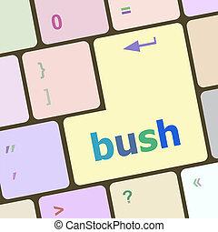 palabra, llaves, computador portatil, arbusto, teclado, icono