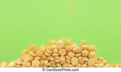 Falling grains of pea on a pile of pea on a green screen.