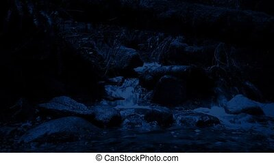 Moving Past A Forest Stream At Night - Dolly shot passing a...