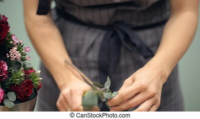 Florist cuts a eucalyptus branch with shares for flower...