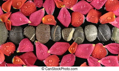 Zoom stones and rose petals with dew drops. Beautiful...