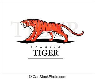 Tiger, roaring tiger. Tiger in alert position
