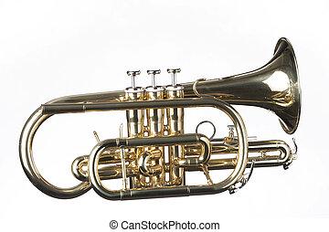 cornet, trompete, isolado, branca