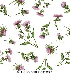 Watercolor seamless pattern with milk Thistle flowers and...