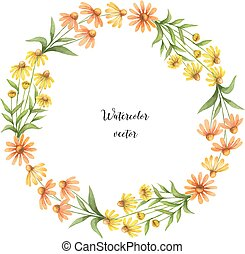 Watercolor vector round frame of echinacea. - Watercolor...