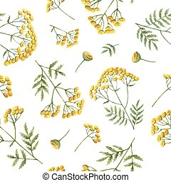 Watercolor seamless pattern with tansy flowers and branches....