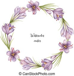 Watercolor vector round frame of saffron. Healing Herbs for...