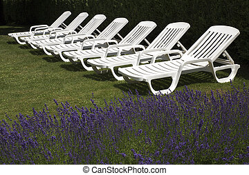 white deck chairs ready for relaxation - A group of white...