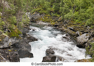 Norway landscape with forest mountains and Raume river....