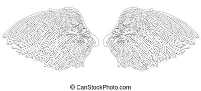 angel wings, vector illustration
