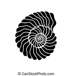 Graphic circle seashell isolated on white background. Tattoo...