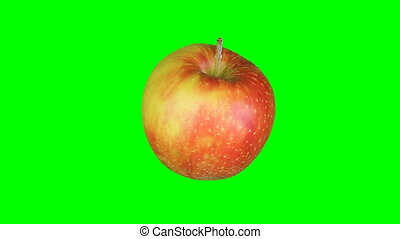 Fresh red apple isolated on green screen - Rotation fresh...
