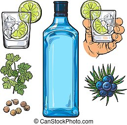 Gin bottle, shot glass with ice and lime, juniper berries,...