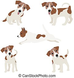 Jack Russell Terrier. Vector Illustration of a dog.