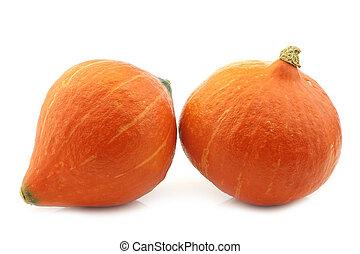 Orange pumpkins on a white background