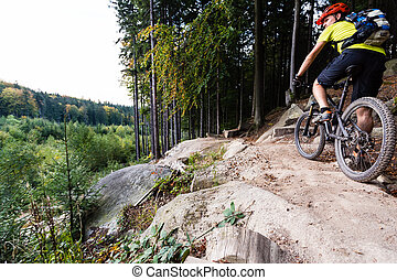Mountain biker riding cycling in autumn forest - Mountain...