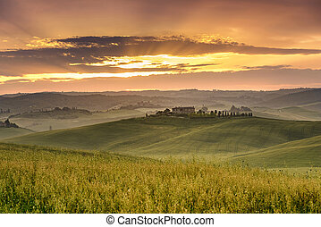 Tuscan landscape - typical Tuscan landscape with rolling...
