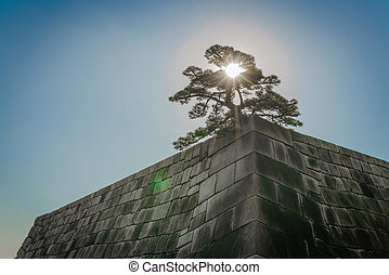 The foundation of a Castle tower of the Edo-jo Castle,Japan