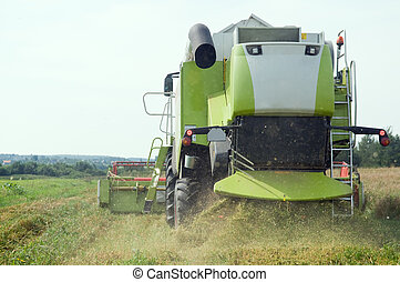 working harvesting combine in field