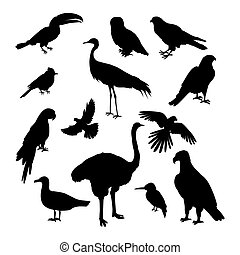 Set of Birds Silhouettes Vector Illustration - Set of birds...