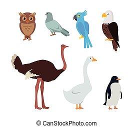 Owl Dove Blue Parrot Eagle Ostrich Goose Penguin - Set of...