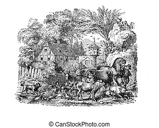 Courtyard farm with domestic animals, vintage engraving