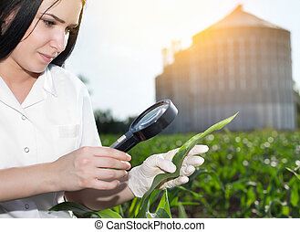 Agronomist in field with silos behind - Young woman...