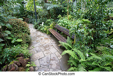 Bench in botanical garden - Bench surrounded with tropical...