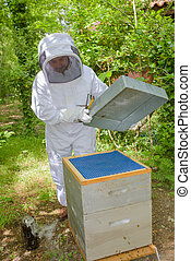 apicultor, colmena, Apertura