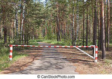 Wooden barrier blocking way to wood - The wooden barrier a...
