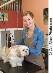 Woman using clippers on dog