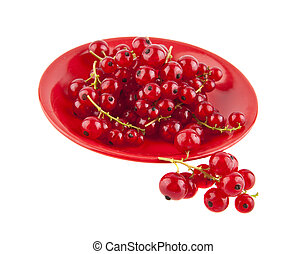 red currant isolated on white background