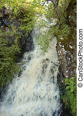 Waterfall at Dunvegan - Waterfall in the garden at Dunvegan...