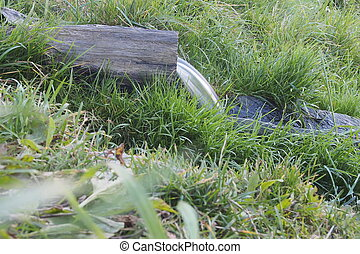 Water source. - The stream flows from a wooden trough. Water...