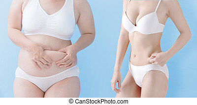 fat woman and slim woman - fat overweight woman and slim...