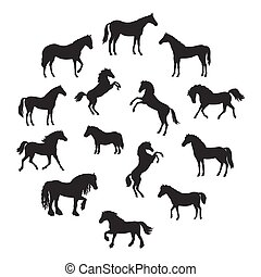 Set of Vector Silhouettes of Horses Breeds - Collection of...
