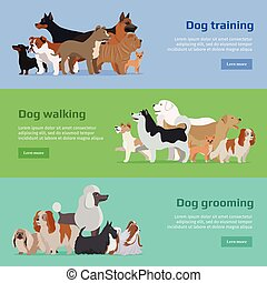 Dog Training, Walking, Grooming Banners Set - Dog training,...