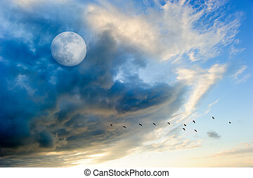 Birds Moon Clouds - Birds moon clouds is a colorful surreal...
