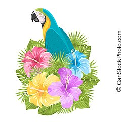 Parrot Ara, Colorful Hibiscus Flowers Blossom and Tropical...