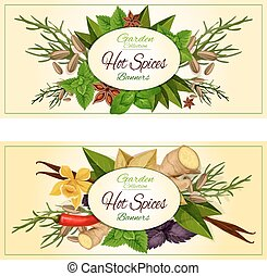Hot spices and herbs vector banners set - Hot spices and...