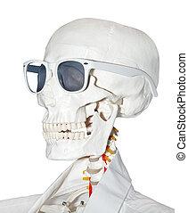 closeup, esqueleto, vista