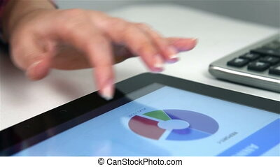 Woman Viewing Reports - Accountant Viewing Financial Reports...