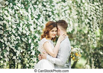 完美, 夫婦, 美麗, 他們, 矯柔造作, 婚禮, 天