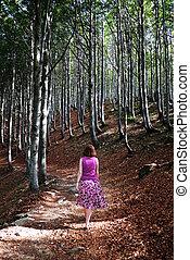 Woman walking in sunlit woods - Rear view of woman in...