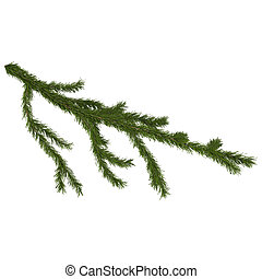 fir branch isolated on white, 3d render