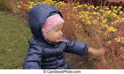 A girl touching red bushes on a flower-bed in the park against the yellow flower.