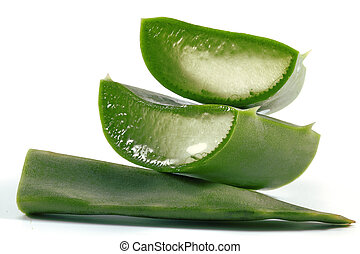 Aloe Vera - Slices of aloe vera plant on white background