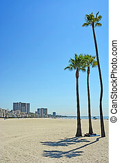 Long beach in California, USA